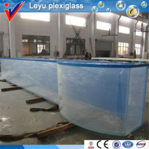 Wholesale Fish Aquarium Decorations Acrylic pictures & photos