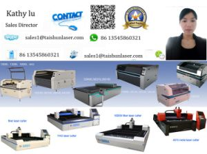 Fiber Metal Laser Cutting Machine 500W for 3mm Stainless Steel pictures & photos