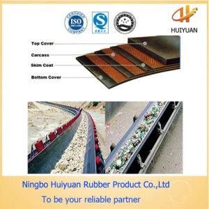 Conveyor Belt for Logistics Conveying Industry pictures & photos