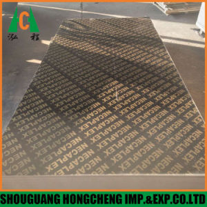 Black Film Faced Plywood/ 18mm Film Faced Plywood From Hong Cheng pictures & photos