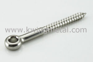 Stainless Steel Lag Eye Screw pictures & photos