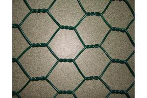 Chicken Wire Mesh/Hexagonal Wire Mesh pictures & photos