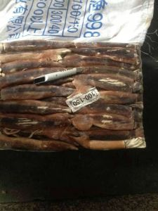 Frozen Illex Squid 100-150g pictures & photos