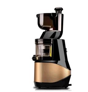 Ningbo New Guanlian Slow Juicer