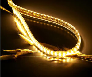 SMD High Lumen LED Rope Light LED Strip Lighting (220V or 110V) pictures & photos