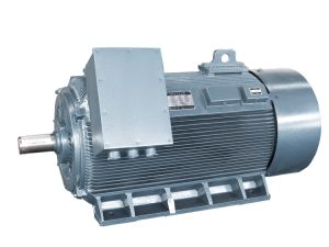 Y2 Low Voltage High Output Electric Motor 800kw-4