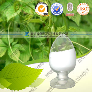 Gynostemma Extract Gypenoside pictures & photos