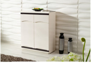 Kitchen Bathroom TV Shoe Storage Side Cabinet (XG-147) pictures & photos
