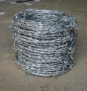 Electric Galvanized Barbed Wire and Hot-DIP Zinc Plating Barbed Wire pictures & photos