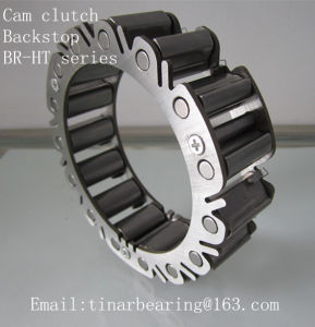 One Way Sprag Overrunning Cam Clutches Br220ht-R290d pictures & photos