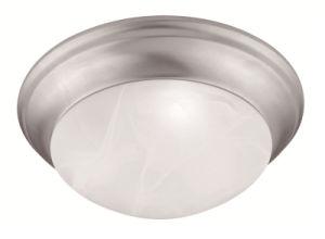 Moderm Simplism Style Ceiling Light (7302-91)