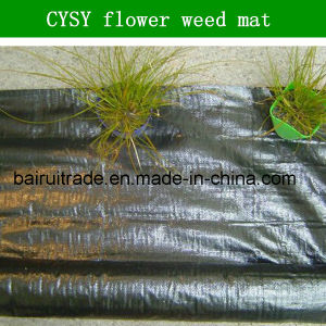 60g PP Weed Mat for Garden pictures & photos