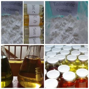 Bodybuilding Steroid Raws Source 58-20-8 Depot Injection Test Cypionate
