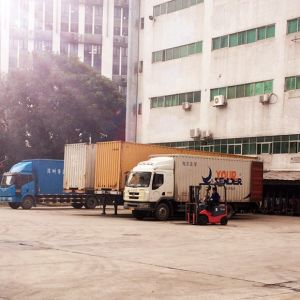 Truck Logistics Shipping From Shenzhen/China to Hongkong pictures & photos