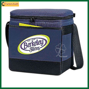 Heavy-Duty Thermal Insulated Picnic Cooler Bags (TP-CB252) pictures & photos