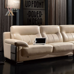 Leather Sofa with Chrome Leg (833) pictures & photos