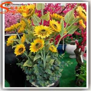 Home Decoration Artificial Plastic Real Touch Sunflower pictures & photos