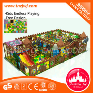 EU Standard Children Indoor Playground Equipment Tn-A14731 with Slide pictures & photos