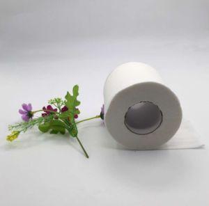 Factory Price Wholesale Bulk Toilet Tissue pictures & photos