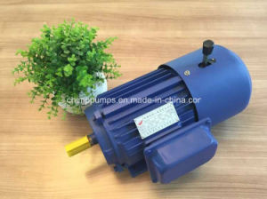 Yej Series Three Phase AC Induction Electromagnetic Brake Motor pictures & photos