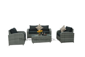 Outdoor Rattan Leisure Furniture Garden Patio Wicker Sofa Set (PAS-1513)