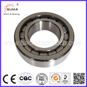 SL18 Bearing Manufacturer Full Complement Cylindrical Roller Bearing pictures & photos