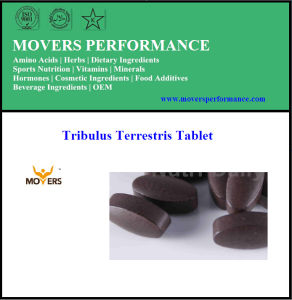 Top Quality Pure Hot Tribulus Terrestris Tablet pictures & photos