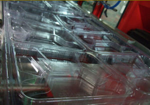 Factory Direct Plastic Fruit Egg Tray Forming Machine pictures & photos