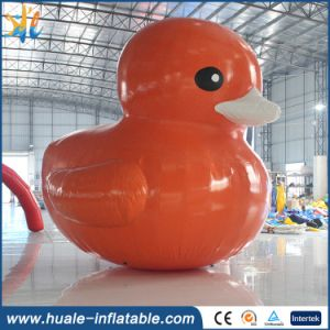 Advertise Inflatable Cartoon Inflatable Ducks Model Inflatable Toy for Sea Lake Pool pictures & photos