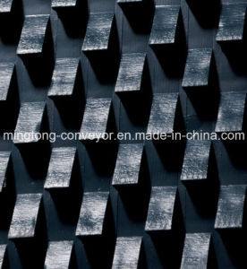Conveyor Belt for Stone Polishing pictures & photos