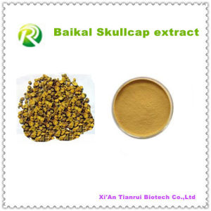 High Quality 100% Natural Plant Extract Baicalin pictures & photos