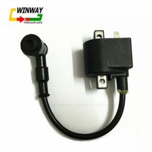 Ww-8316 Motorcycle Part Ignition Coil for Ax100 pictures & photos