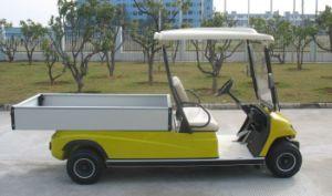 Electric Golf Cargo Car pictures & photos