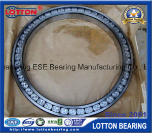 Full Complement Cylindrical Roller Bearing (SL182226)