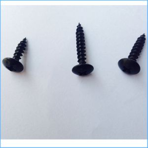 The Black Drywall Screw′size Can Customize pictures & photos