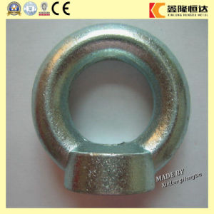 DIN582 Lifting Eye Nut with Galvanized Forged pictures & photos