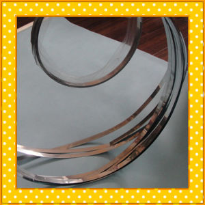 316L Narrow Stainless Steel Strip pictures & photos