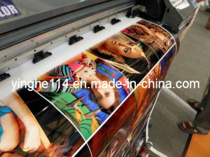 Indoor Inkjet Printing Media Waterproof PP Paper pictures & photos