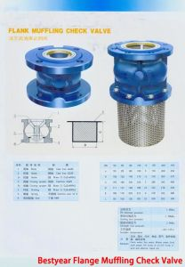 Flange Muffling Check Valve pictures & photos