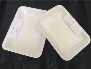 Cheap White Polystyrene Foam Food Container Tray with Meat Absorbent Pads pictures & photos