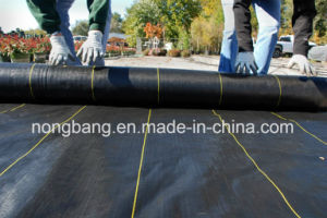 Heavy Duty Polypropylene Woven Landscape Fabric Ground Cover pictures & photos