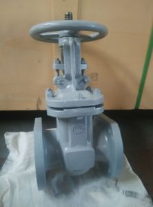 GOST Cast Steel PN16 gate valve pictures & photos