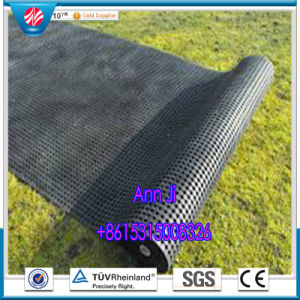Outdoor Lawn Grass Mats, Anitifatigue Mats, Rubber Flooring pictures & photos