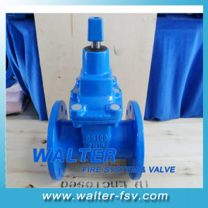 Bs5163 Gate Valve pictures & photos