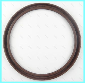Double Lip Rotary Shaft Tc Oil Seal/ Mechanical Seal pictures & photos