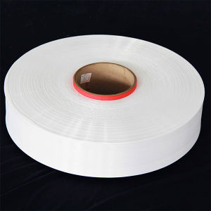Transparent Nylon 66 FDY Yarn pictures & photos