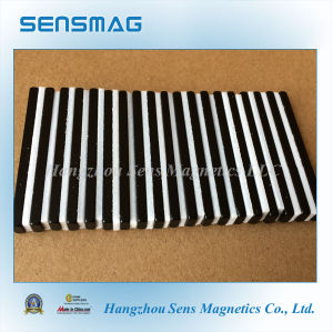 N45sh Permanent Neodymium NdFeB Magnets with Epoxy Coated pictures & photos