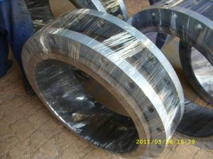 Carbon Steel Flange with Lr, DIN/ANSI/En/JIS pictures & photos