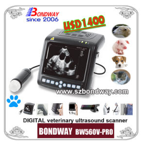 Digital Wrist-Top Veterinary Ultrasound Scanner (BW560V-PRO) pictures & photos