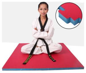 EVA Mats Martial Art Style Grade T Shape EVA Tatami Taekwondo Mat pictures & photos